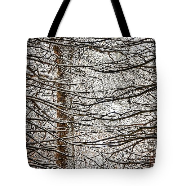 Winter In The Woods Tote Bag