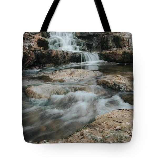 Winter Inthe Falls Tote Bag