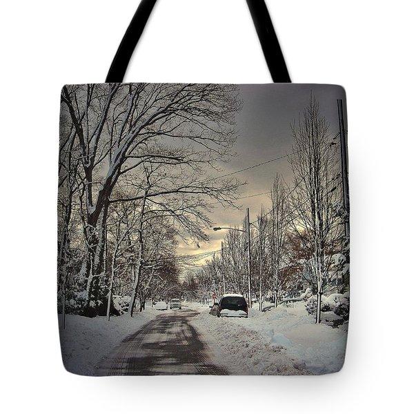 Winter Landscape Tote Bag by Mikki Cucuzzo
