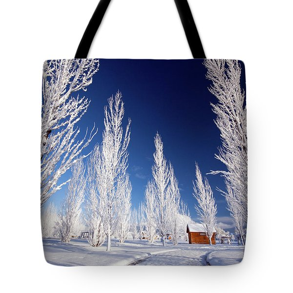 Tote Bag featuring the photograph Winter Landscape by Wesley Aston