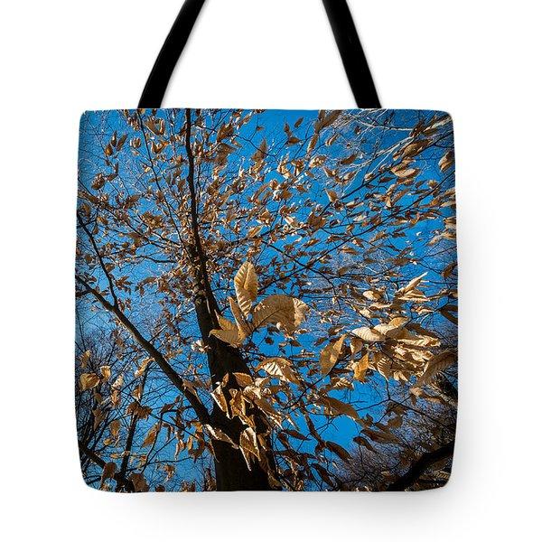 Winter Leave Burst Tote Bag