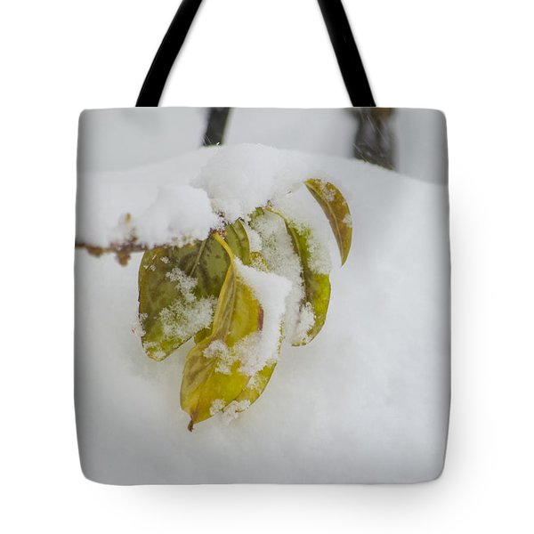 Winter Leaves Tote Bag