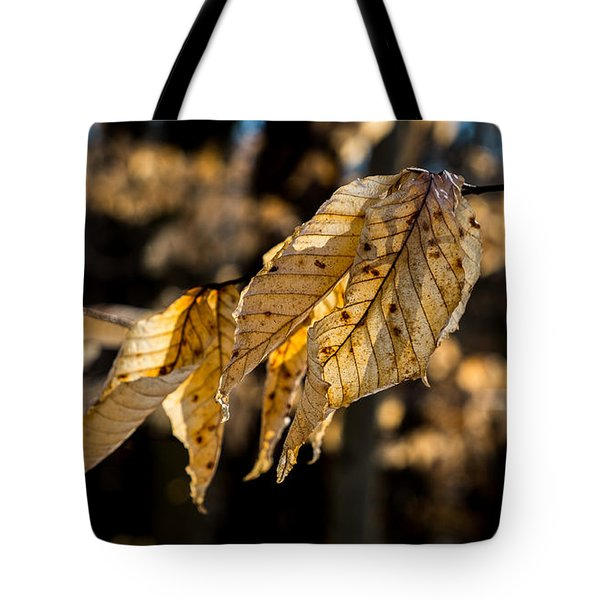 Winter Leaves Left Tote Bag
