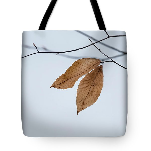 Tote Bag featuring the photograph Winter Leaves by Tom Singleton
