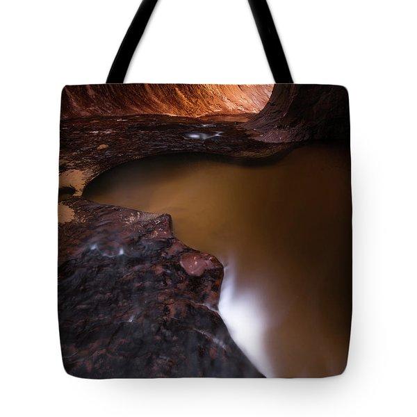 Winter Light Tote Bag by Dustin LeFevre
