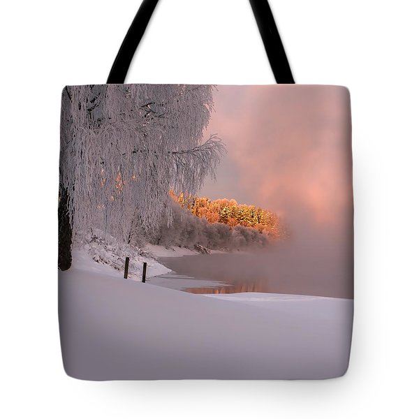 Winter Light Tote Bag by Rose-Maries Pictures