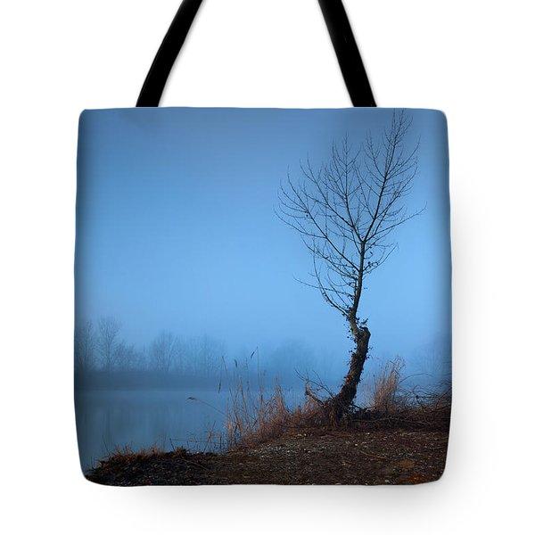 Winter Loner Tote Bag