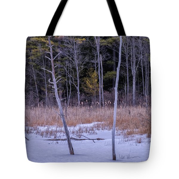 Winter Marsh And Trees Tote Bag
