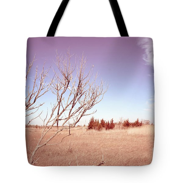 Tote Bag featuring the photograph Winter Marshlands by Colleen Kammerer