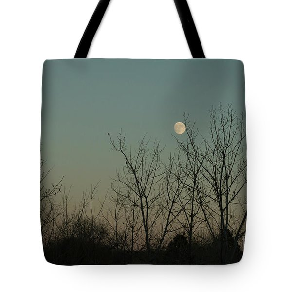 Tote Bag featuring the photograph Winter Moon by Ana V Ramirez