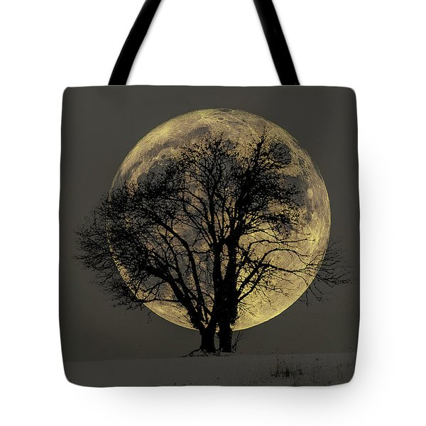 Tote Bag featuring the tapestry - textile Winter Moon by Dennis Bucklin