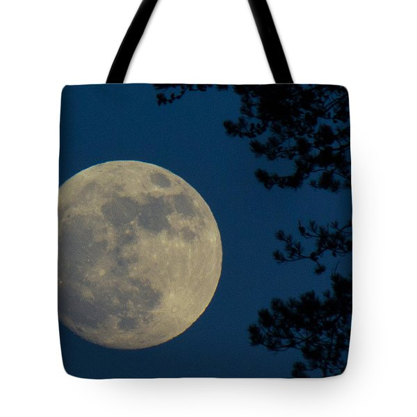 Winter Moon Tote Bag by Randy Hall