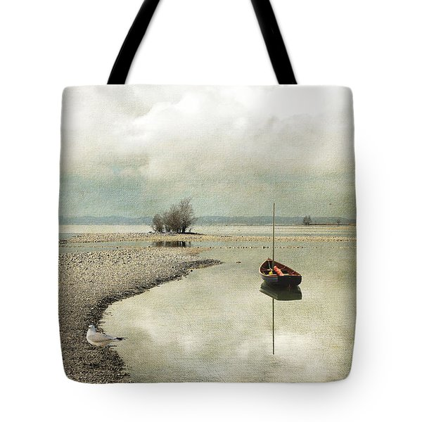 Tote Bag featuring the photograph Winter Morning By The Lake by Chris Armytage