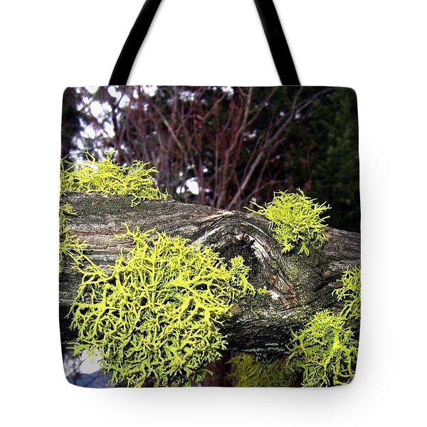 Winter Moss Tote Bag