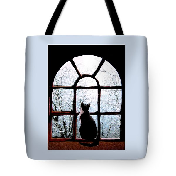 Winter Musing Tote Bag by Angela Davies