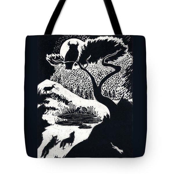 Winter Night Tote Bag by Dawn Senior-Trask