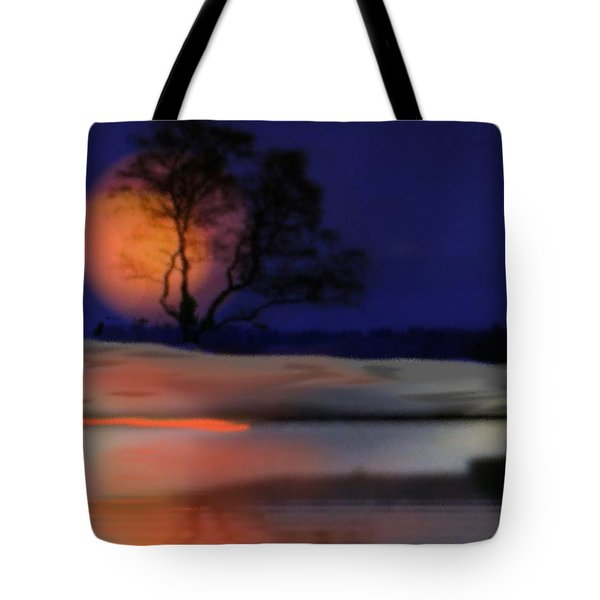 Tote Bag featuring the digital art Winter Night by Dr Loifer Vladimir