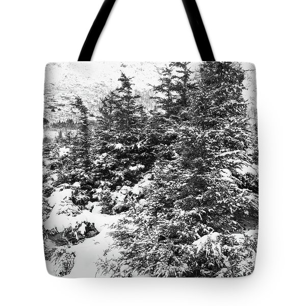 Winter Night Forest M Tote Bag