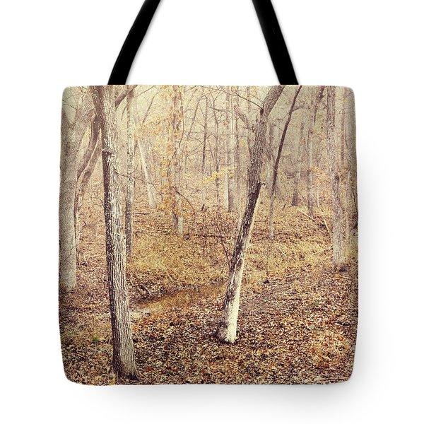 Winter Nostalgia Tote Bag