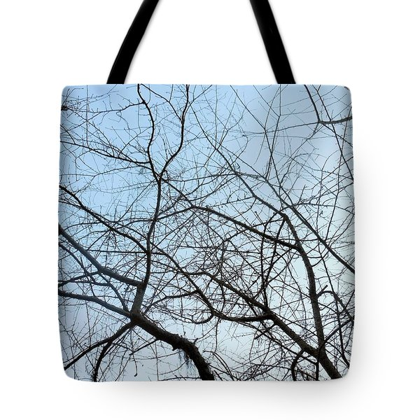 Tote Bag featuring the photograph Winter Of Life by Kay Gilley