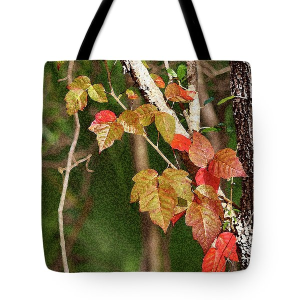 Winter On Gillot Blvd. Pt. Charlotte,fl Tote Bag