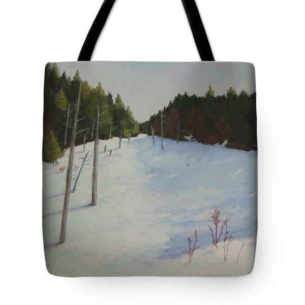Winter On Moose Pond Tote Bag