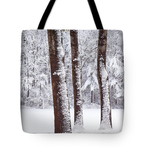 Winter On Paradise Pond Tote Bag