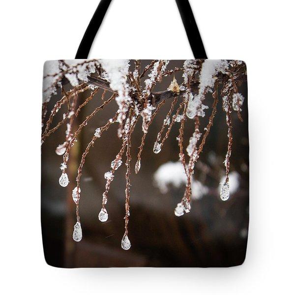 Winter Ornament Tote Bag