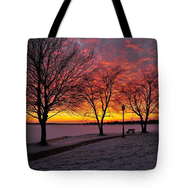 Tote Bag featuring the photograph Winter Park by Terri Gostola