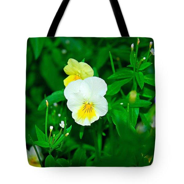 Winter Park Violets 1 Tote Bag