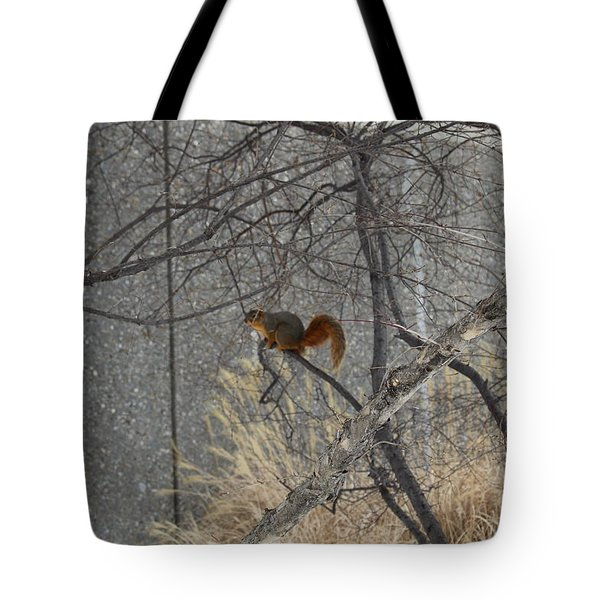 Winter Preparation  Tote Bag
