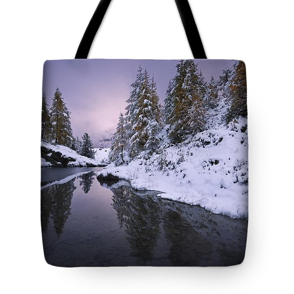 Winter Reverie Tote Bag by Dominique Dubied