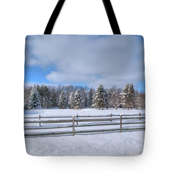 Tote Bag featuring the photograph Winter Scenery 14589 by Guy Whiteley
