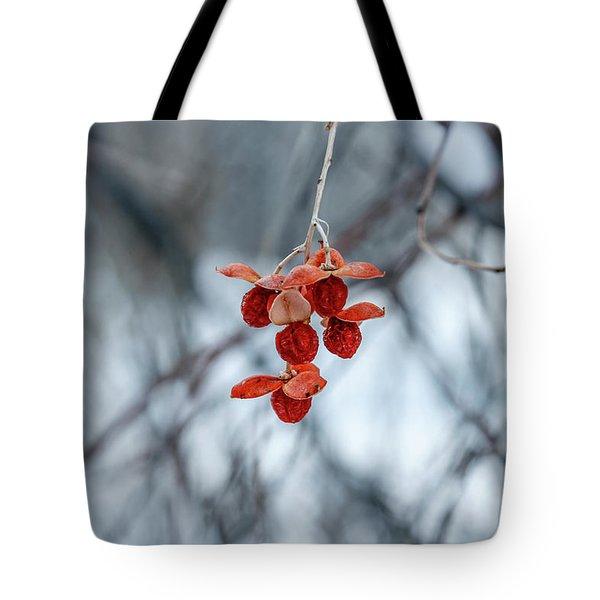 Winter Seeds Tote Bag