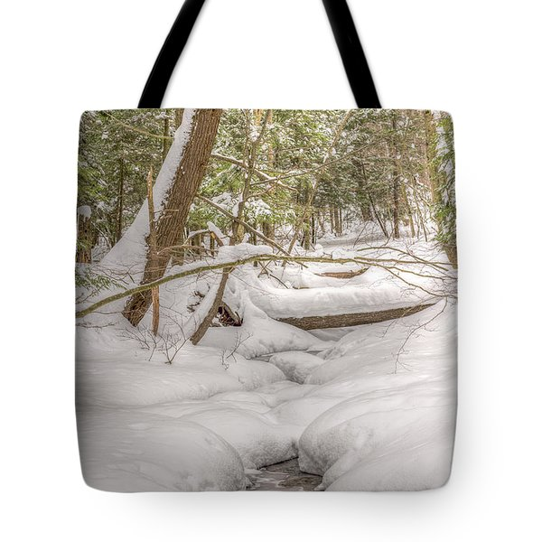 Winter Serenity Tote Bag