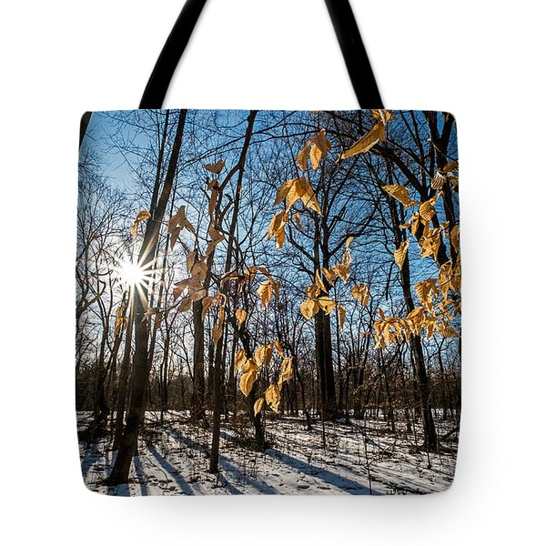 Winter Shadows And Light Tote Bag