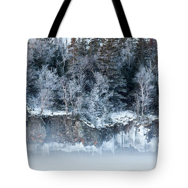 Winter Shore Tote Bag