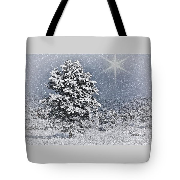 Tote Bag featuring the photograph Winter Solitude 2 by Diane Alexander