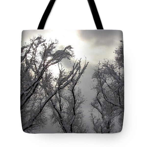 Winter Solstice Utah Tote Bag