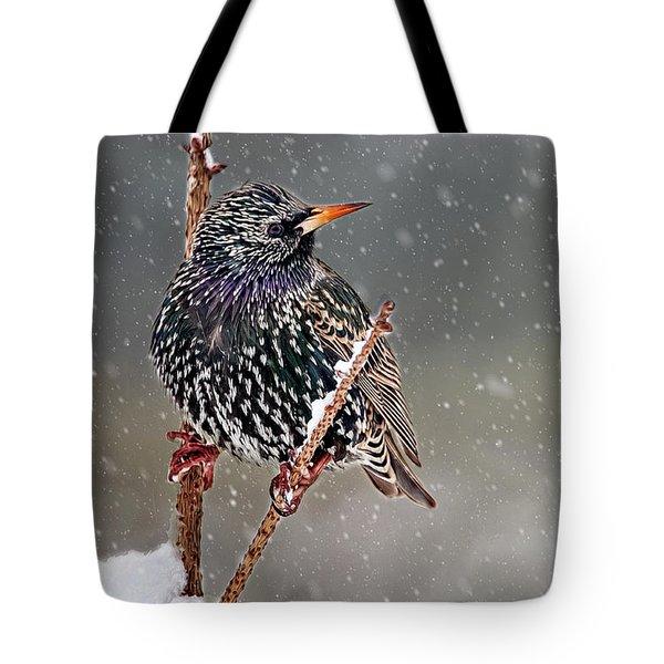 Winter Starling 2 Tote Bag