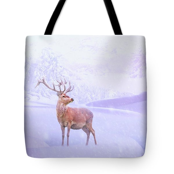 Winter Story Tote Bag