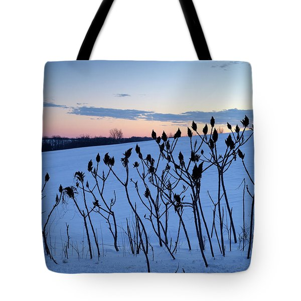 Winter Sumac 2016 Tote Bag