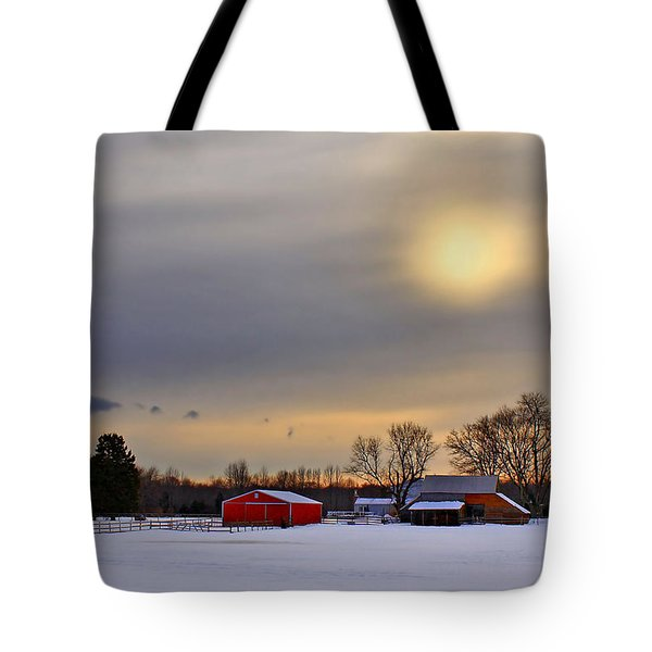 Winter Sun Tote Bag by Evelina Kremsdorf