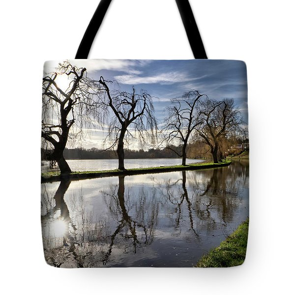 Winter Sun Tote Bag by Shirley Mitchell