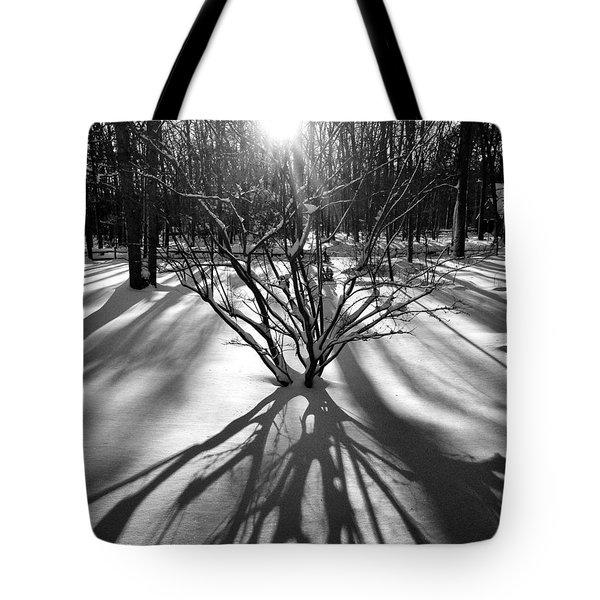 Winter Sunrise Shadows Tote Bag