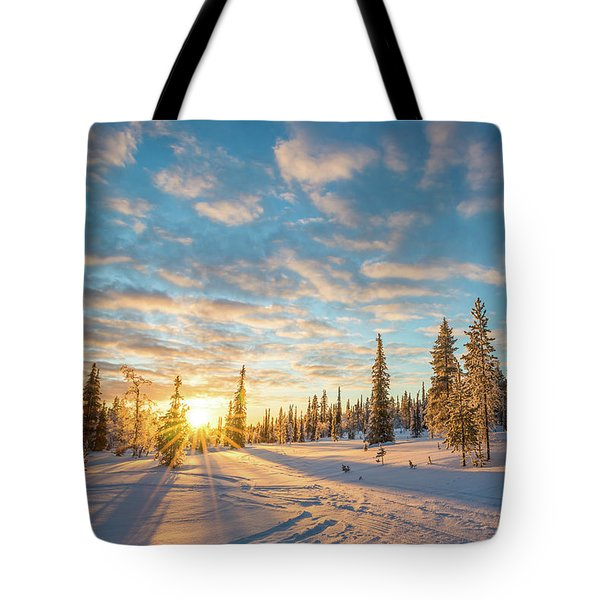 Tote Bag featuring the photograph Winter Sunset by Delphimages Photo Creations