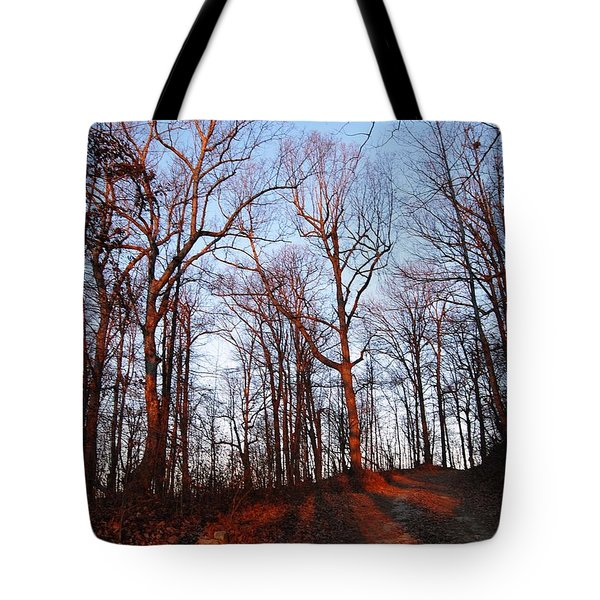 Winter Sunset In Georgia Mountains Tote Bag by Angela Murray