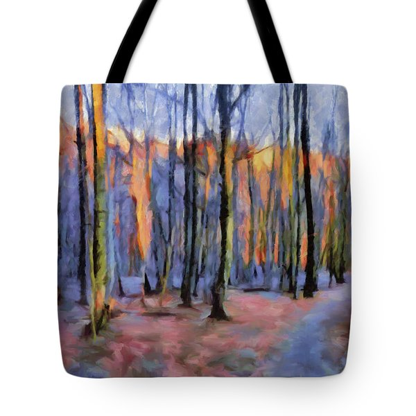 Winter Sunset In The Beech Wood Tote Bag by Menega Sabidussi