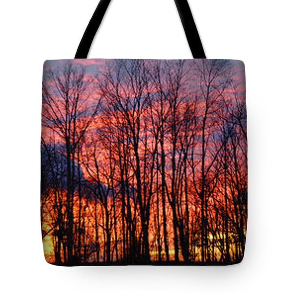 Tote Bag featuring the photograph Winter Sunset Panorama by Francesa Miller