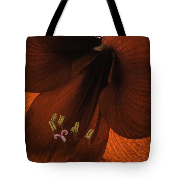 Winter Sunshine Tote Bag
